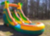 Tropical Slide3.jpg