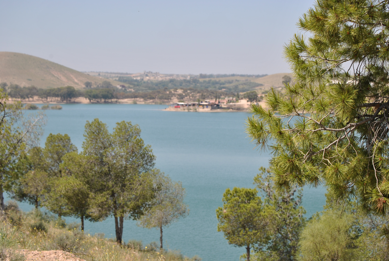 Le Patio du Lac