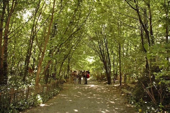 jardins-secretos-paris-le-jardin-naturel