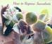 Growing your own succulent garden