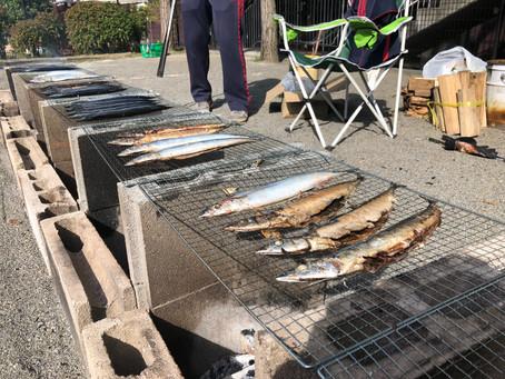 プレイバック秋刀魚