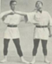 jujitsu oldschool.jpg