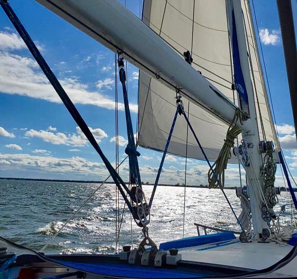 Calm day quixotic seamaster 46