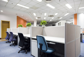 How To Create An Allergy Proof Office