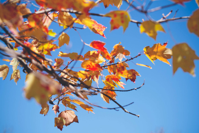Goodbye Summer…Hello Fall! Tips for Seasonal Changes in Skincare