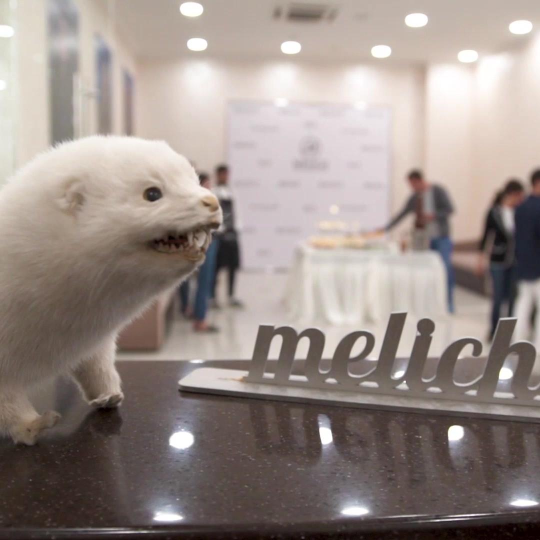 Фабрика Меха и Кожи MELICH