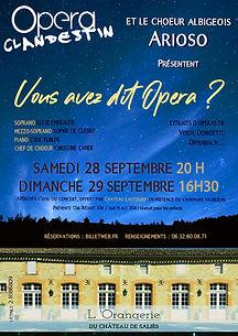 Vous_avez_dit_Opéra_AFFICHE.jpg