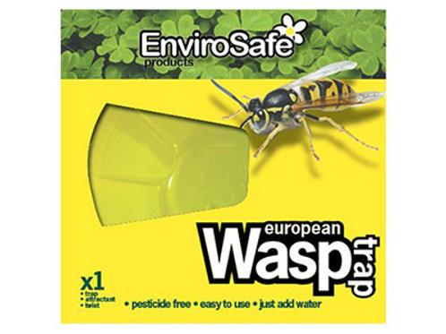 European Wasp trap