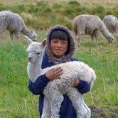 kid_and_alpaca.jpg