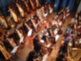 Harfeunterricht Hannover Angela Klöhn
