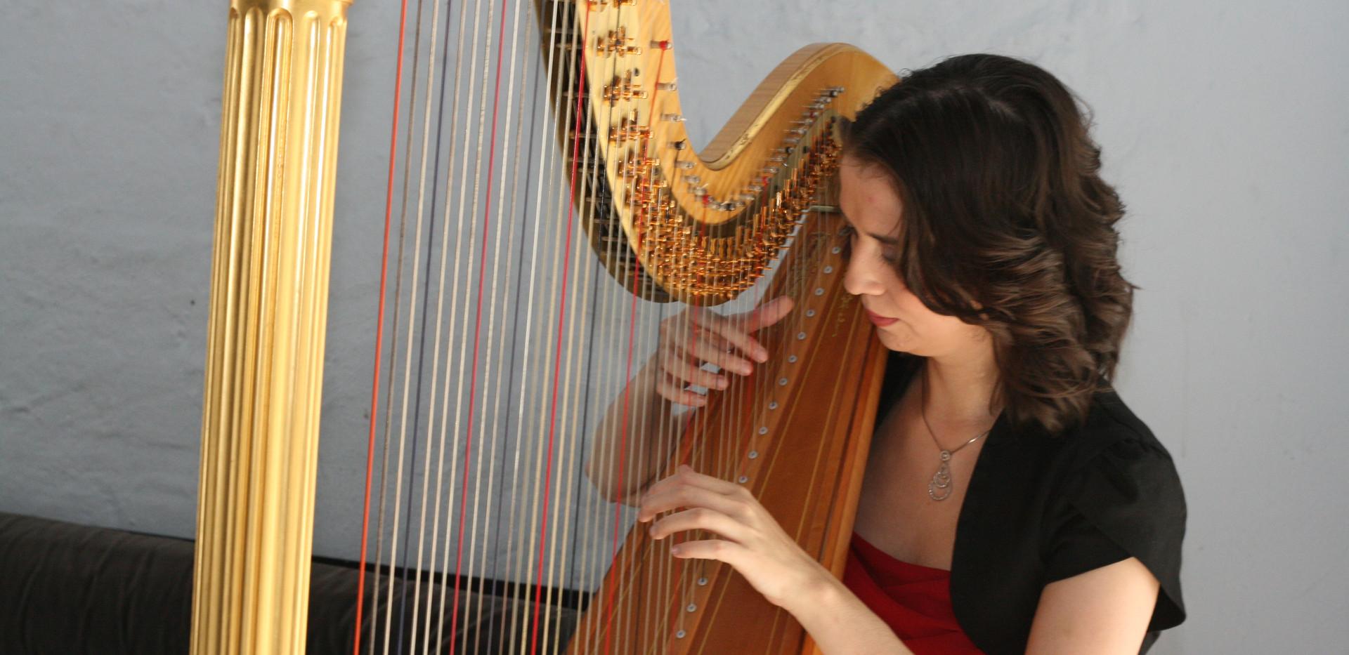 Harfenistin Angela Klöhn