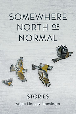 SomewhereNorthOfNormal-Book-Cover.jpg