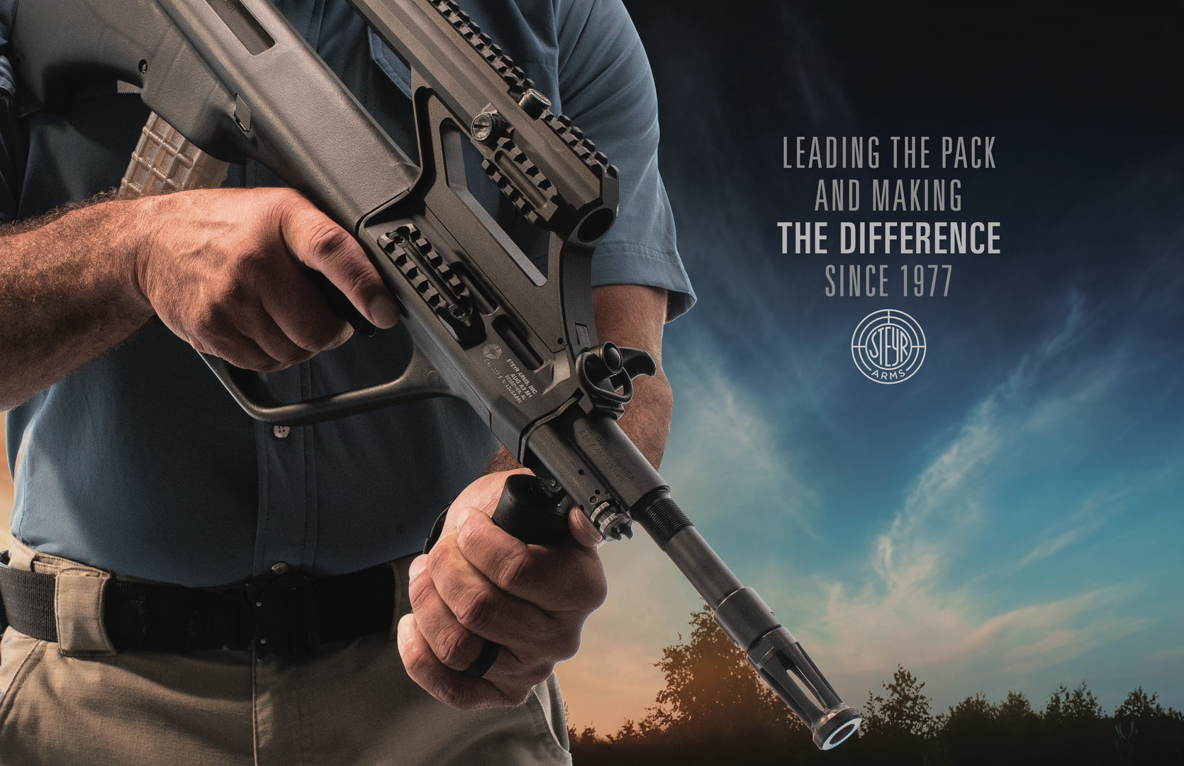 Steyr Catalog Catagory Leader Page