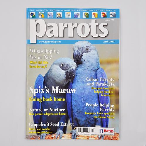 Parrots Magazine April