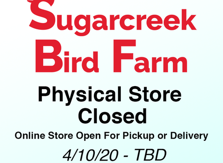 Physical Store Closed, Online Store Open