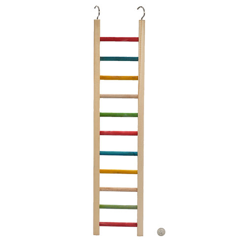 Rainbow Ladder Medium