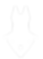 ArtDogs (белый) ,tp ntrcnf.png