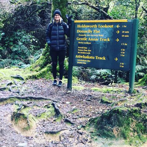 Mt Holdsworth