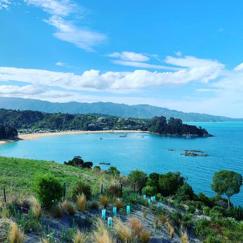 Kaiteriteri, New Zealand