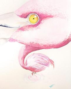 #pinkflamingo #watercolorpainting #worko