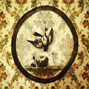 #bird #apple #cherry #wallpaper #wall #b