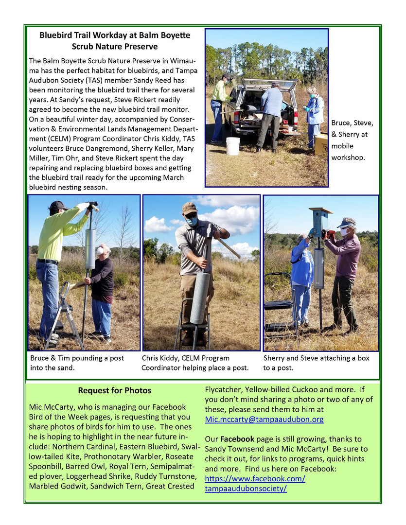 2 Feb newsletter 21_Page_3.jpg
