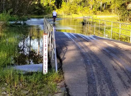 Bluebird Trail Report 7-30-2019