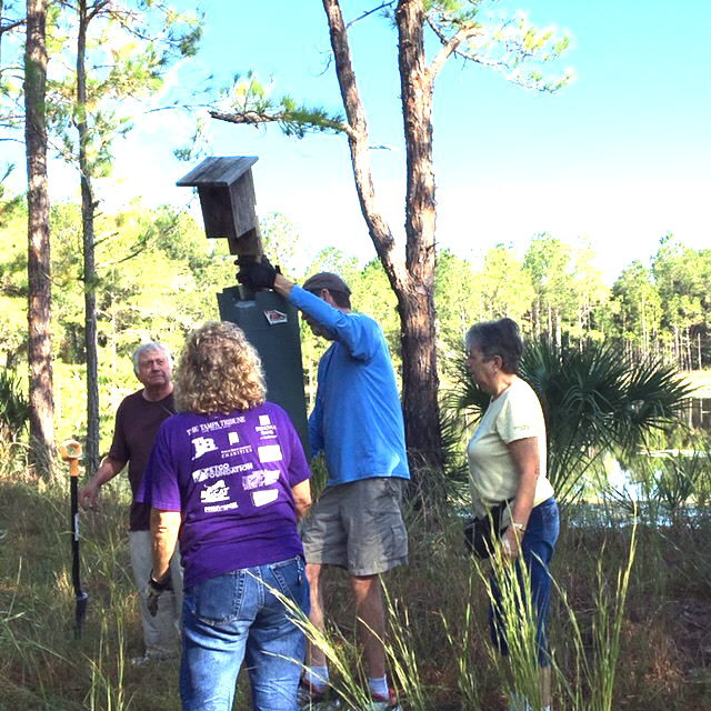 Volunteers relocating a bluebird box at Flatwoods park