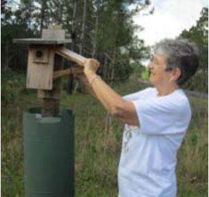 Bluebird Trail Report 8-5-2019