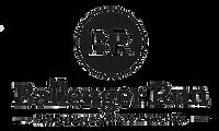 Ballenger Run Logo 500.png