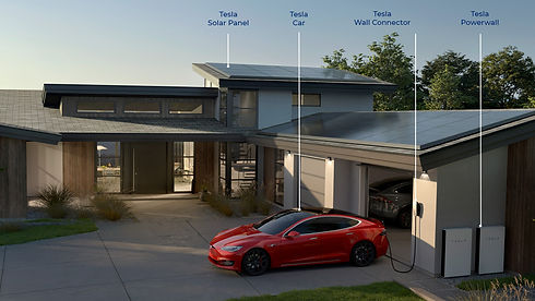 Tesla Ecosystems for AEI website.jpg