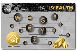 Hapi Wealth Black Diamond copy_300x.png