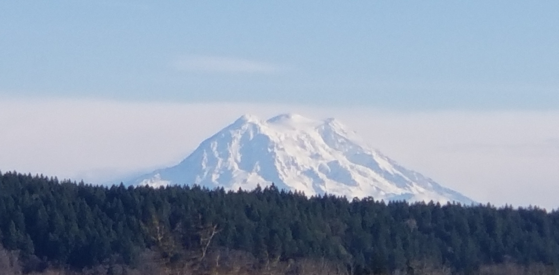 Mount Rainier visible in the distance