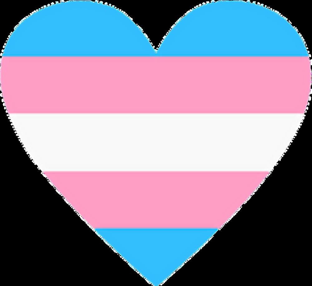 Transgender flag colored heart