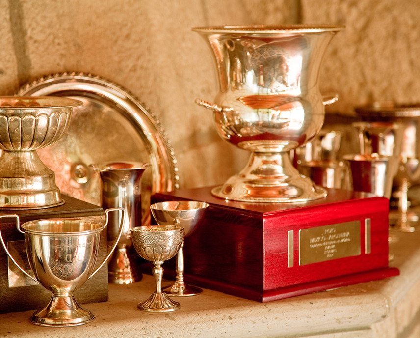 Gold Polo Trophies.jpg