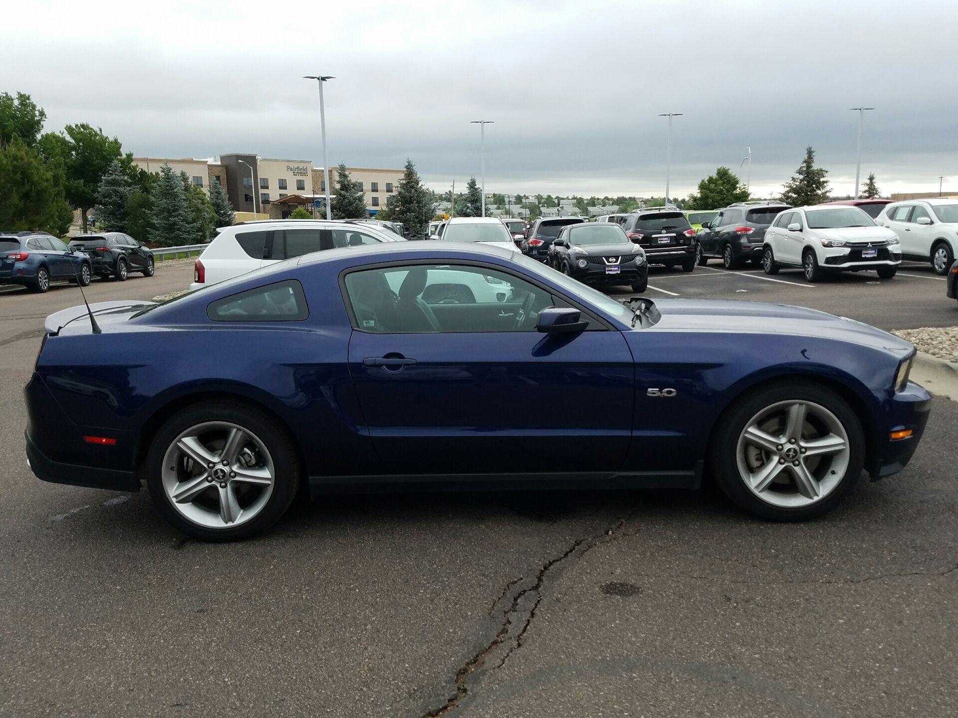 Wonders Mustang