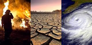 Climate change behind European heatwave