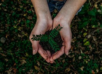 Environment concerns grow