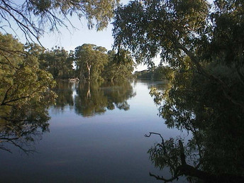 Murray-Darling Basin Plan water savings target effectively reduced