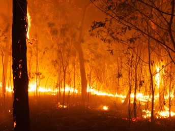 Climate change boosts Australian fire risk by 30%