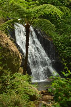 Cachoeira do Cipó
