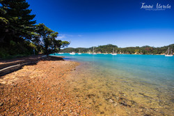BONACORD HARBOUR NZ