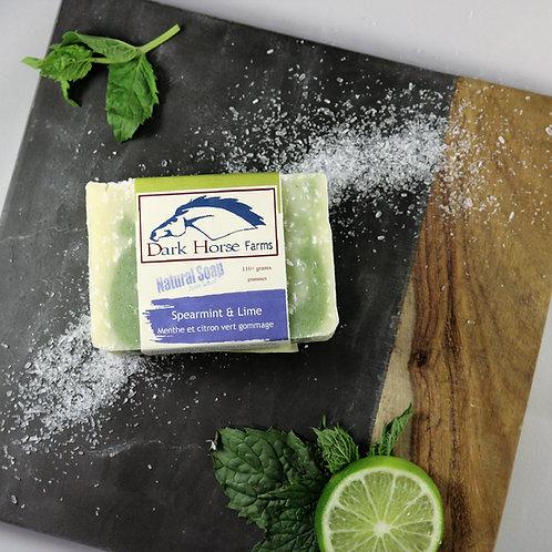 Spearmint Lime Salt Scrub Soap
