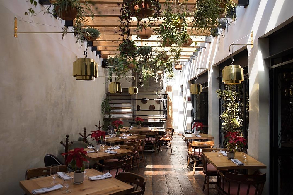 source: https://www.dwell.com/article/10-best-places-for-design-nerds-to-dine-in-mexico-city-b14a3e7c