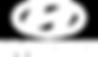 hyundai-logo_cópia.png