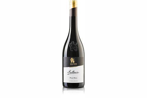 2017 Pinot Nero 'Saltner'