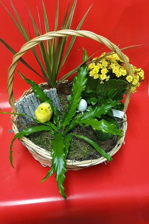 Vasque de plante 2