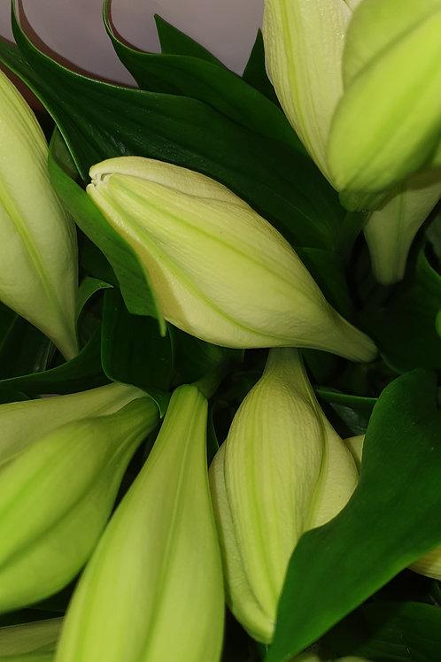 Bouquet garnit petit prix grand plaisir ❤