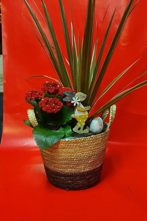 Vasque de plante 4