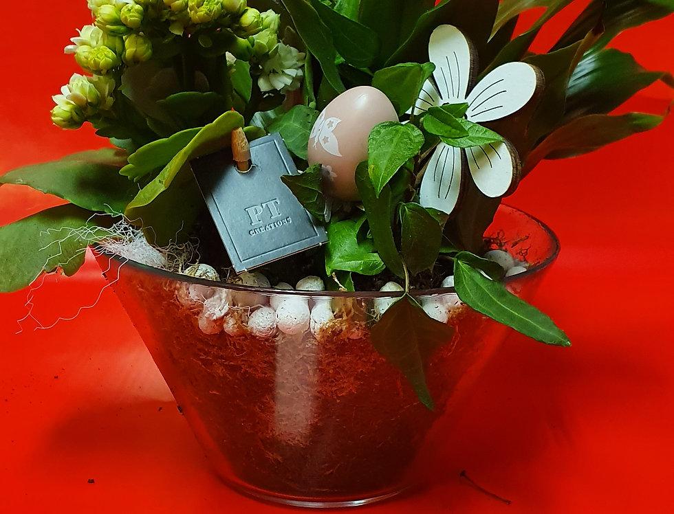 Vasque de plante base en verre 3